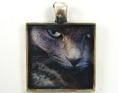 Cat Pendant, Gray Cat Charm, Photo Pendant, Nature Jewelry, Black Silver Fierce Cat Pendant, Cat Jewelry - CharleneSevier