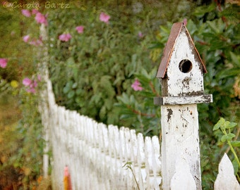 Birdhouse Fence Photograph, 8x10 Photo Print, Gift for Bird Lovers and Gardeners, Fine Art Photography, Wall Hanging, White Picket Fence