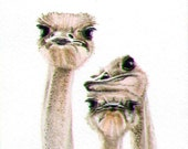 Ostrich painting 5x7, african animals, art earthspalette