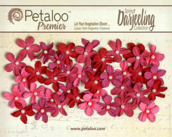 30% OFF TODAY ONLY - Petaloo - Mini Pearl Daisies (40 Pack) - Fuschia
