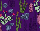 Cacti Garden at Night Giclée Print A4