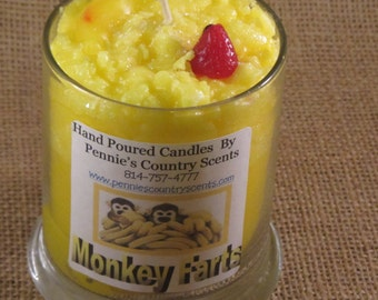 Monkey Farts Gourmet Scented De-Lights  Candle