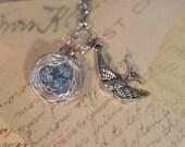 Bird Nest and Bird Necklace