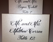 Reserved for Daria - Handwritten Calligraphy Escort Cards in Shimmer Ivory