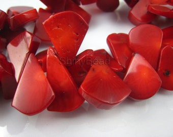 red coral flat  teardrop 20x15mm 8 inch strand