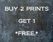 Buy 2 Get 1 Free - All Literature Prints