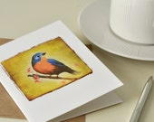 Bird Notecard Card Set - Robin Bluebird Chickadee Goldfinch - 4 Blank Cards Recycled Paper Stickers Included- Eco-Friendly