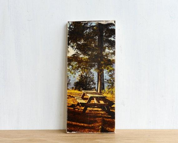Park Picnic Image Transfer Mini on Wood - by Patrick Lajoie Fine Art Photography, picnic table, lake, summer picnic