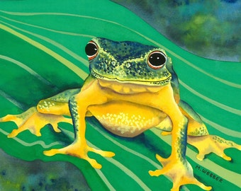 Tree Frog Green and Yellow Amphibian Limited Edition Print Watercolour Painting