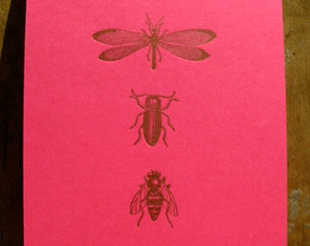Flying insects notebook - Letterpress