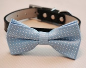 Blue Dog bow tie attached black leather collar, Pet Wedding accessories, Some thing blue, Dog Lovers, Wedding idea