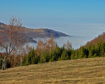 Autumn Mountain Landscape Art Photography , Wall Art , Home Decor - Above the Clouds , 8 x 12
