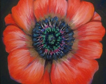 "Fine Art Giclee Print, Red Poppy, Pastel Painting By Jan Maitland, Red Flower, flower Portrait, 8"" X 8"" Archival Print"