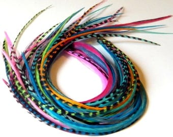 Hair Feathers - Feather Extensions - Beautiful Color Variety