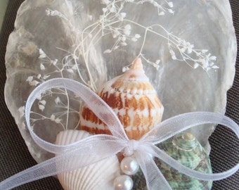 Shell Boutonniere/Corsage