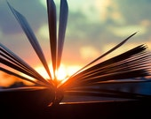 Digital Download Book photography Open book and Sunset Sun Rays Decorating Ideas Old books Library Art Gift Ideas Home Decor