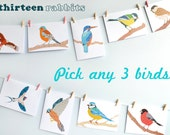 Pack of 3 Bird Greetings Cards