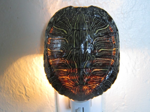 Red Slider Turtle Shell Night Light Lamp Nite Lite Unique