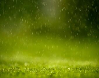 Natural China Rain Perfume Oil, China Rain Fragrance Oil, China Rain Scent, China Rain Oil, Lotions and Potions