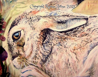 Close Up Hare and Foxgloves Beautiful Morena Artina Giclee Print of  Watercolour and Ink Painting on Watercolour Paper