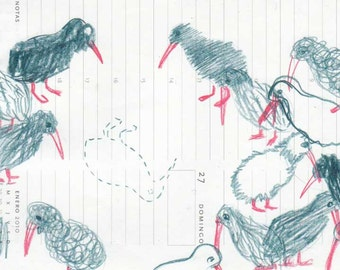 Kiwi Bird original drawing in blue and red