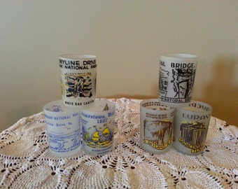 Collectible Souvenir Frosted Shot Glasses from Virginia