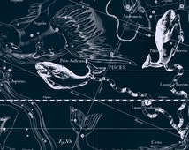 Zodiac constellation, Moon poster, Astronomy, Pisces, 121