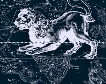 Zodiac horoscope, Constellation, Star map, 102