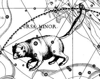Zodiac, Antique prints, Constellation map, 137