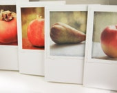 Four Note Cards-Winter Fruit Set-nature photography- fruit, apples, kitchen art, red, gold, green, 5x7 kitchen chic