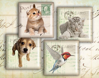 Digital Collage Sheet - 1 inch Squares - Printable Download - Instant Download - Best for jewelry pendants - ANIMALS COLLAGE