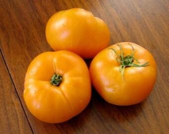 Heirloom, Jubilee Tomato, Garden, Meaty, Non Acid, Gardeners Favorite, 10 Seeds