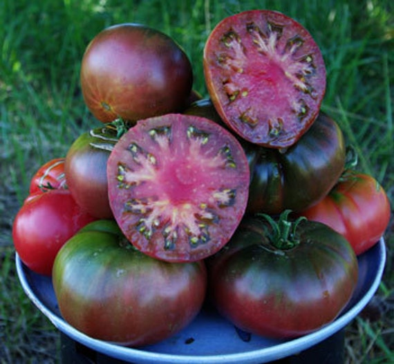 heirloom black krim tomato grown on our farm by cheapseeds. Black Bedroom Furniture Sets. Home Design Ideas
