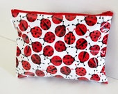 Lady bug zip pouch / travel wet /dry bag made from waterproof material