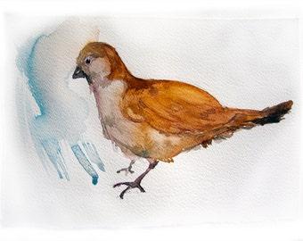 Bird painting. Watercolor painting of bird. Art Original