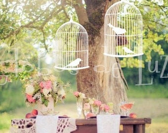 2 Hanging Wooden Bird Cages for weddings