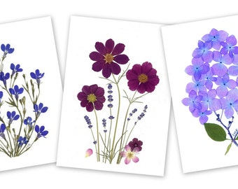 Set of 6 Pressed Flower Cards - Lobelia, Cosmos, Hydrangea #006