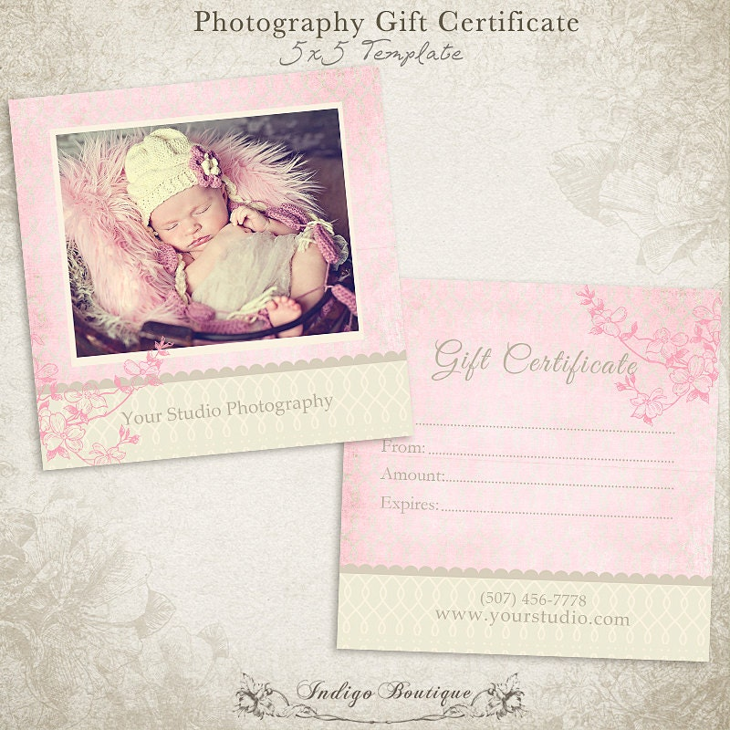 photography gift certificate photoshop template by indigoboutique. Black Bedroom Furniture Sets. Home Design Ideas