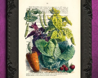 Vegetable print winter vegetables print gift for chef cook kitchen art veggie print