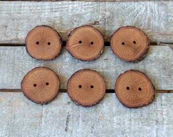Wood Buttons - Branch Buttons - Handmade Wood Buttons-6 large  blackjack tree branch buttons - 1 3/5 inches diameter.For handbags,knitting