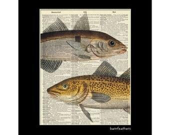 Vintage Dictionary Art Print - Fish - Dictionary Page - Fishing - Book Art Print No. P87