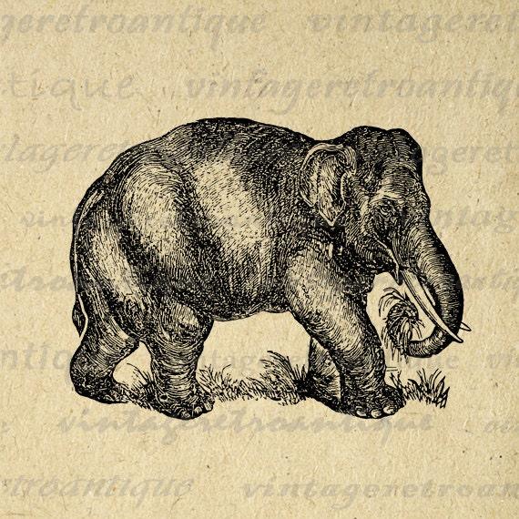 vintage elephant clip art - photo #26