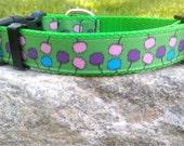 Pom Pom 1 Inch Width Dog Collar