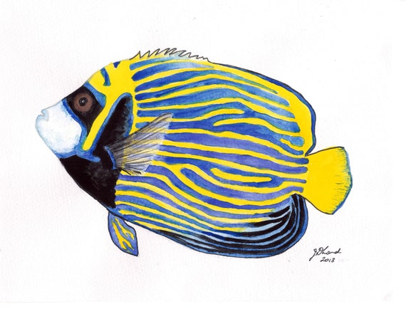 Items similar to Watercolour fish painting, study of an ...