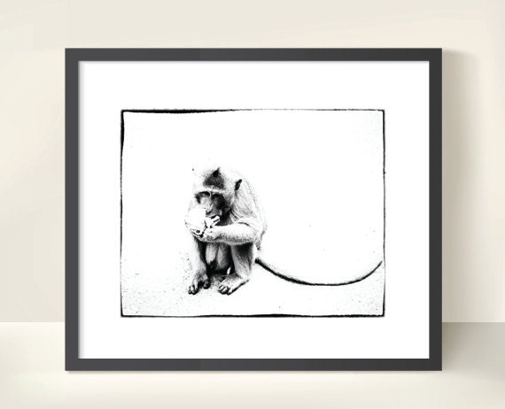 Monkey in Cambodia. Monochrome. Travel Photography. Black & White Print by OneFrameStories.