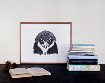 Woodlands: The Owl - An A3 Print of an angry owl