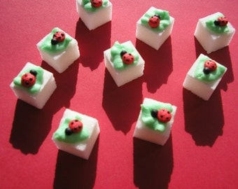 28 Pcs Decorated Sugar Cubes Lady Bug Collection     Simply Darling