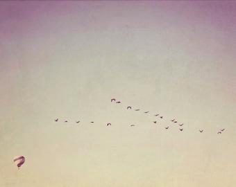 Wanderlust, Fine Art Photography, Geese Flying, Hot Air Balloon Photography, Nursery Art, Wall Decor