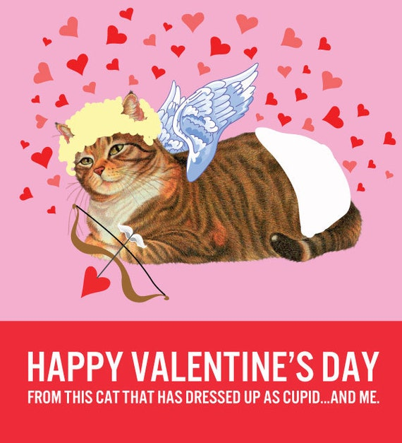 Catnip Toys For Valentine S Day : Items similar to cat cupid valentine s day card