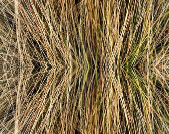 4x6 Grass Abstract print mat and easel included